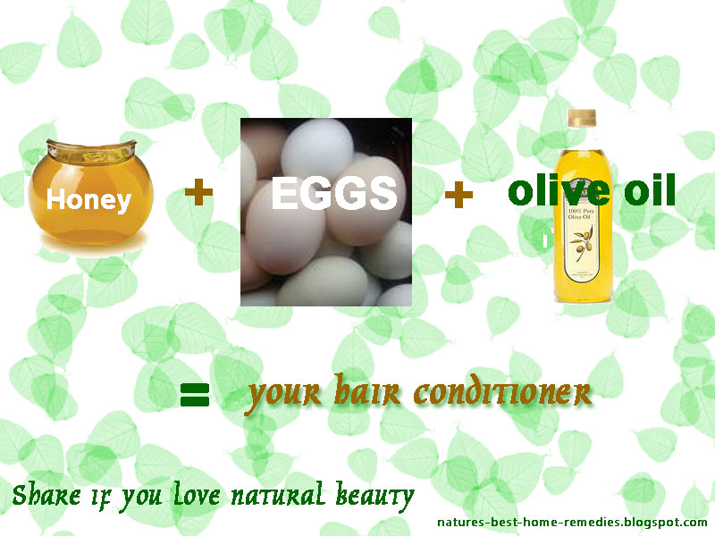 Natural Hair Conditioner Recipes Honey