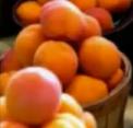 natural facial masks apricot